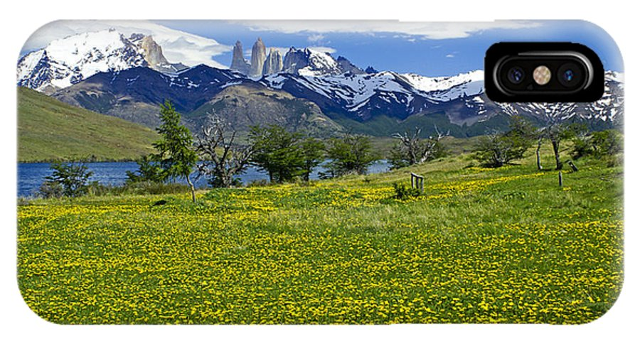 Patagonia IPhone X Case featuring the photograph Springtime In Torres Del Paine by Michele Burgess