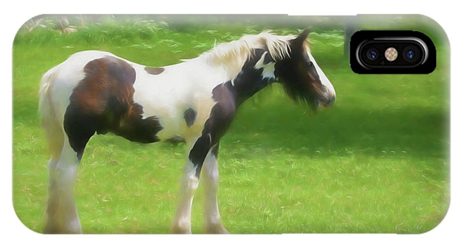 Gypsy Woods Farm IPhone X Case featuring the digital art A Beautiful Young Gypsy Vanner Standing In The Pasture by Rusty R Smith