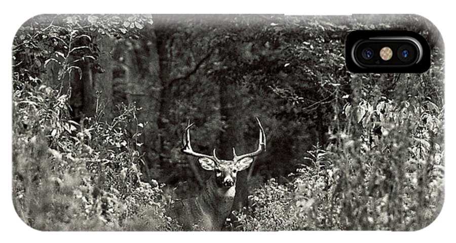 Black And White IPhone X / XS Case featuring the photograph A Big Buck In Rut by John Harmon