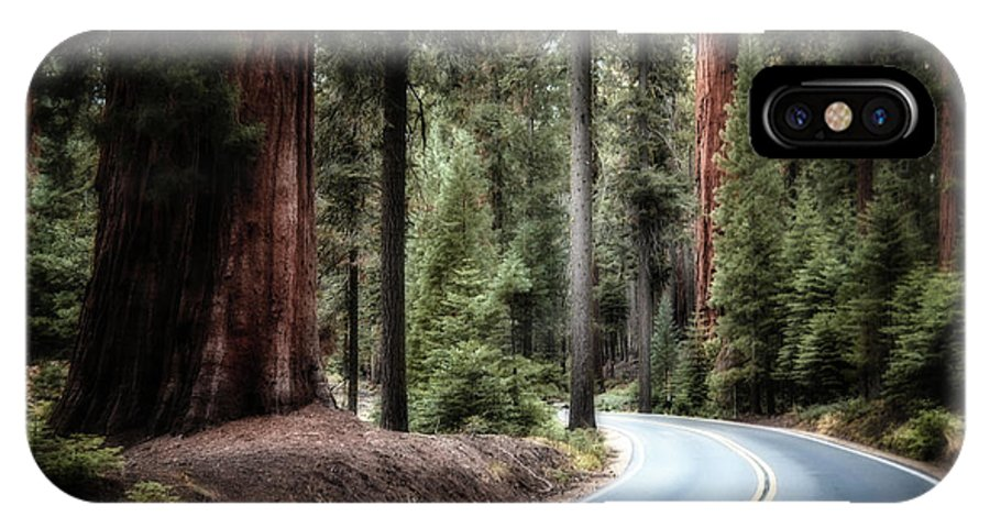 Sequoia IPhone X Case featuring the photograph A Bright Future Around The Bend by Andrea Platt