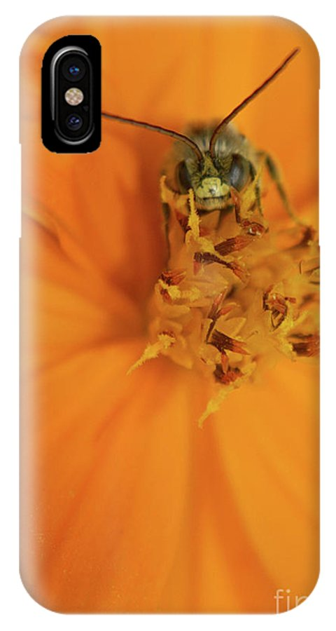 Larva IPhone X Case featuring the photograph A Bugs Life by Jack Norton