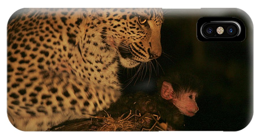 Okavango Delta IPhone X Case featuring the photograph A Day-old Baboon Befriends A Young by Beverly Joubert