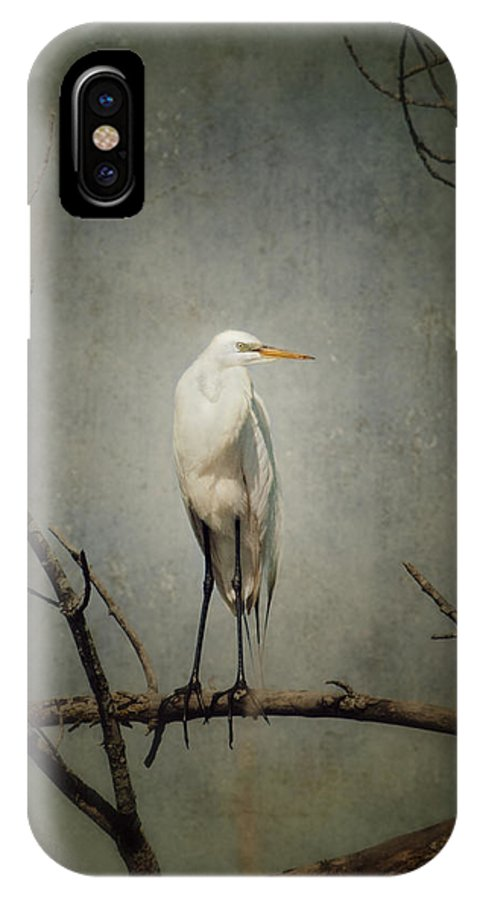 Great Egret IPhone X Case featuring the photograph A Great Egret by Al Mueller