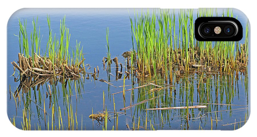 Spring IPhone X Case featuring the photograph A Greening Marshland by Ann Horn