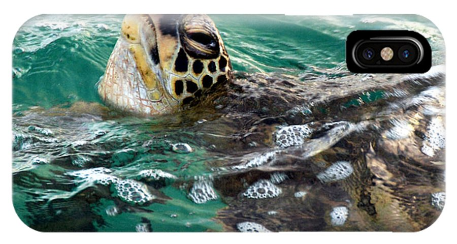 Hawaii IPhone X / XS Case featuring the photograph A Gulp Of Air by Doug Shanaman