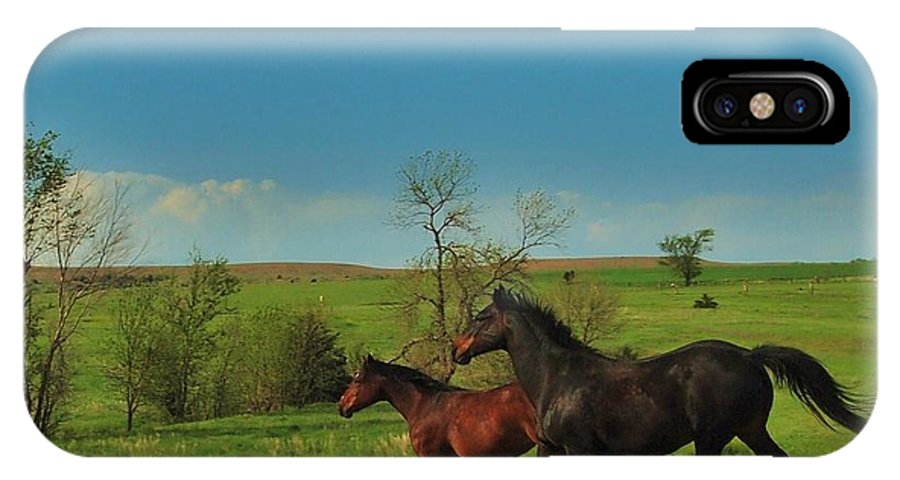 Hawk IPhone X Case featuring the photograph A Hawk And Horses In Kansas by Greg Rud