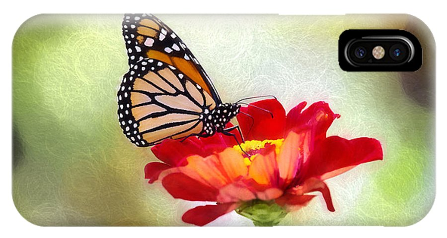 Nature IPhone X Case featuring the photograph A Monarch Moment by Sharon McConnell