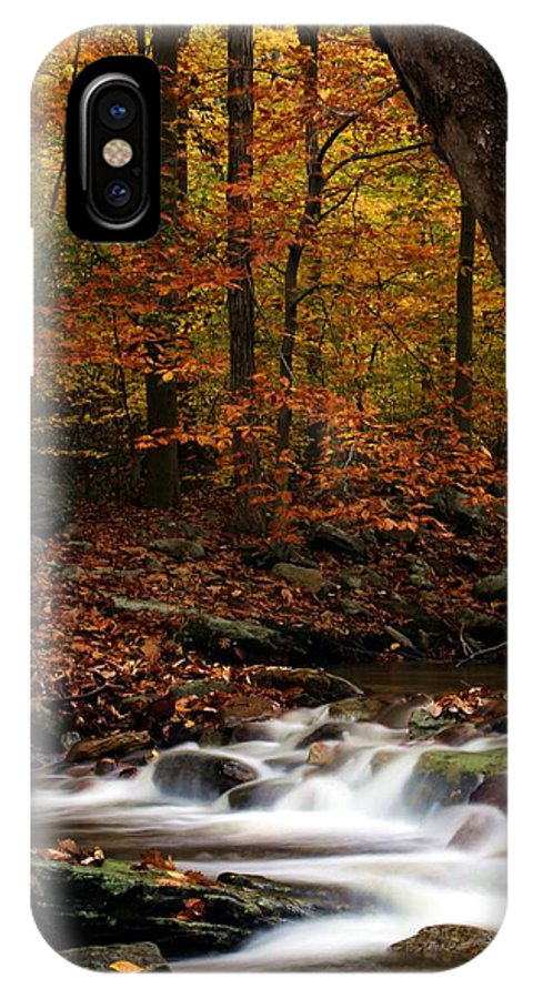 Autumn IPhone X Case featuring the photograph A Spectacle by Mitch Cat