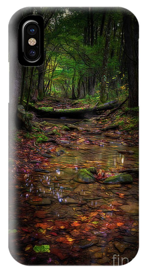 Creek IPhone X Case featuring the photograph A Spot Of Sunshine by Larry McMahon
