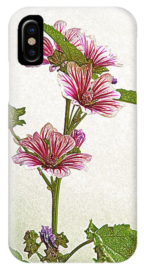 Flower IPhone X Case featuring the photograph A Summer Splash Of Color by Michael Peychich