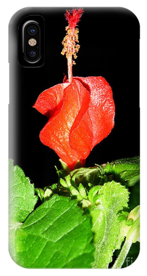 Nature IPhone X Case featuring the photograph A Swirl Of Red by Lucyna A M Green
