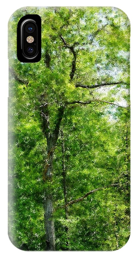 Digital Photo IPhone X Case featuring the photograph A Tree In The Woods At The Hacienda by David Lane