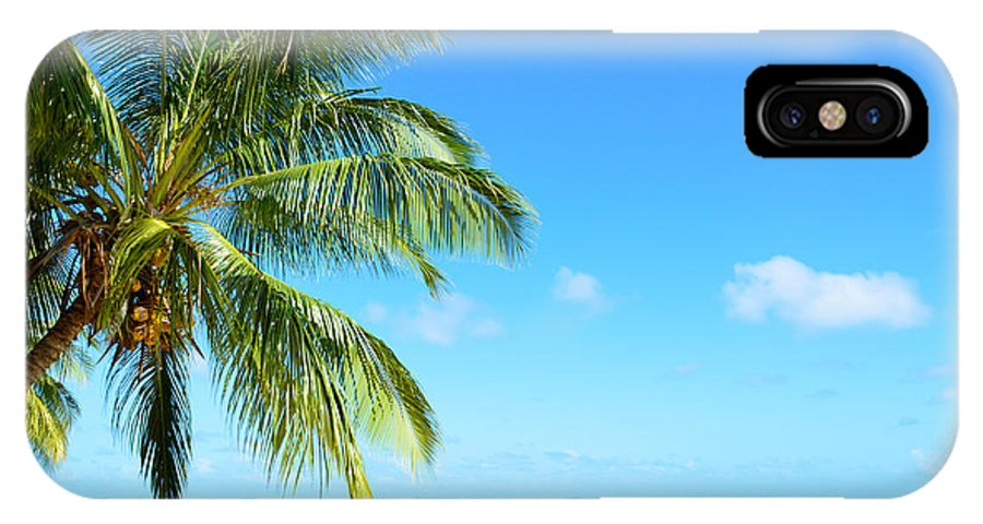 Beach IPhone X Case featuring the photograph A Tropical Palm Tree Beach by IPics Photography