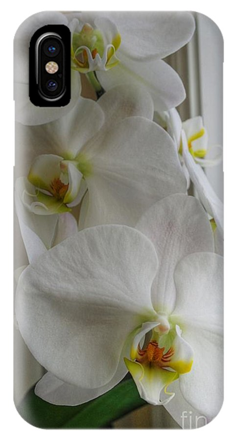 Orchid IPhone X Case featuring the photograph A White Orchid Day by David Bearden