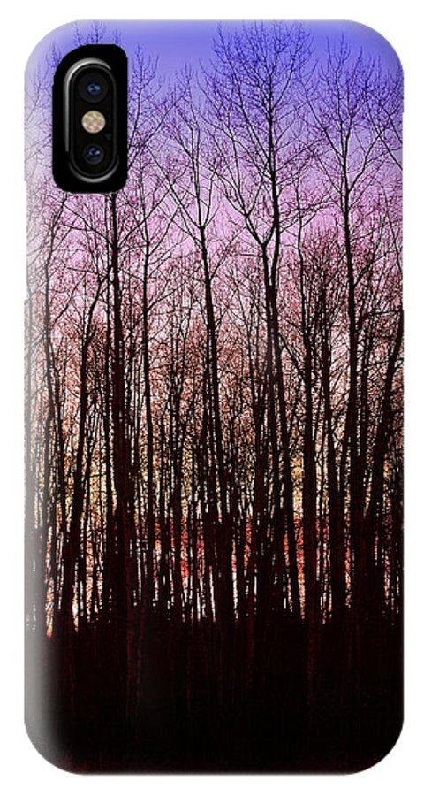 Trees IPhone X Case featuring the photograph A Winter Sunset by Julius Reque