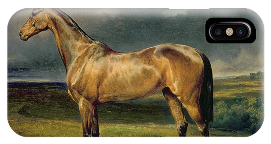 Equestrian; Portrait; Brown; Bay; Landscape; Horse IPhone X Case featuring the painting Abdul Medschid The Chestnut Arab Horse by Carl Constantin Steffeck