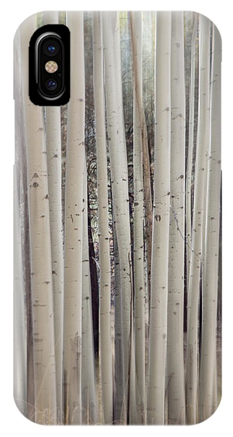 Abstract IPhone X Case featuring the photograph Abstract Aspen Tree Trunks by Susan Westervelt