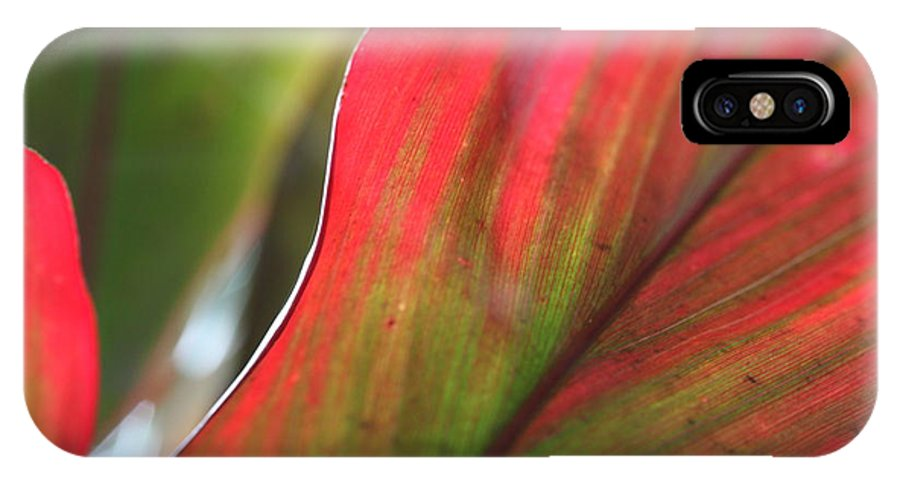 Pink IPhone X Case featuring the photograph Abstract Leaves by Nadine Rippelmeyer
