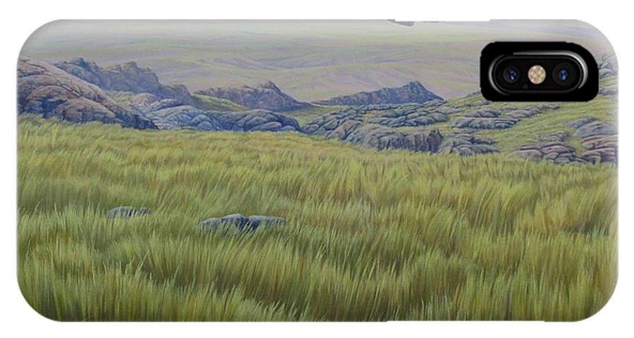 Grass IPhone X Case featuring the painting Achala Landscape by Juan Enrique Marquez