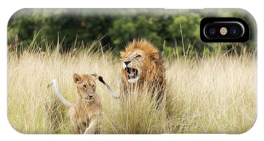 Lion IPhone X Case featuring the photograph Adult Lion And Cub In The Masai Mara by Jane Rix
