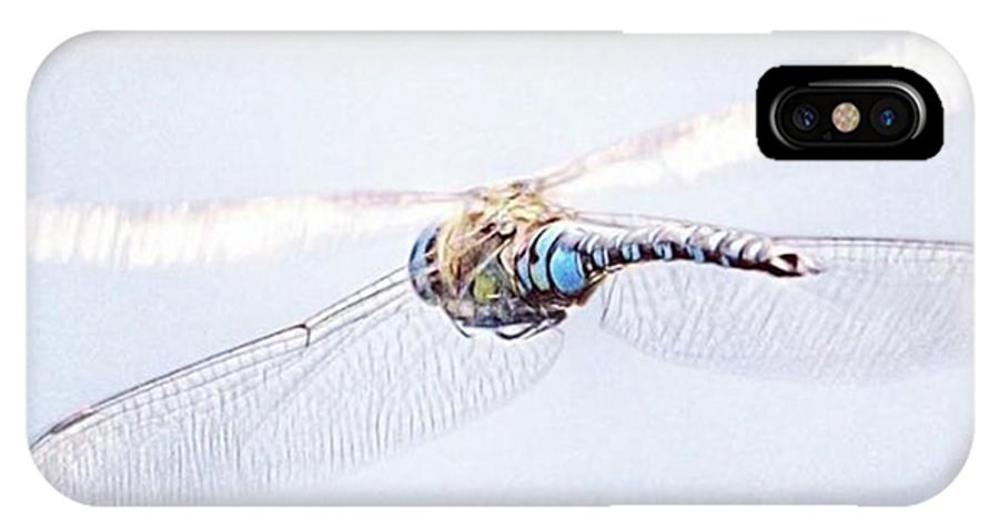 Dragonfly IPhone X Case featuring the photograph Aeshna Juncea - Common Hawker In by John Edwards