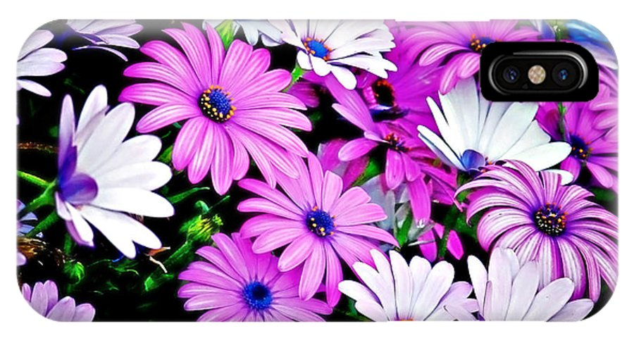 Flowers IPhone X Case featuring the photograph African Daisies - Arctotis Stoechadifolia by Christine Till