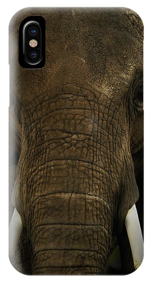 Africa IPhone X Case featuring the photograph African Elephant by Michael Cummings