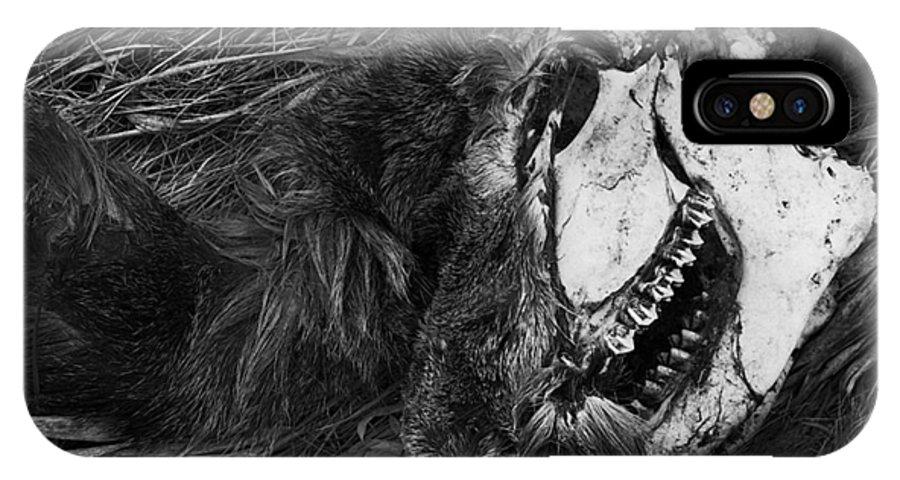 Landscape IPhone X Case featuring the photograph After Death by Abhishek Dasgupta