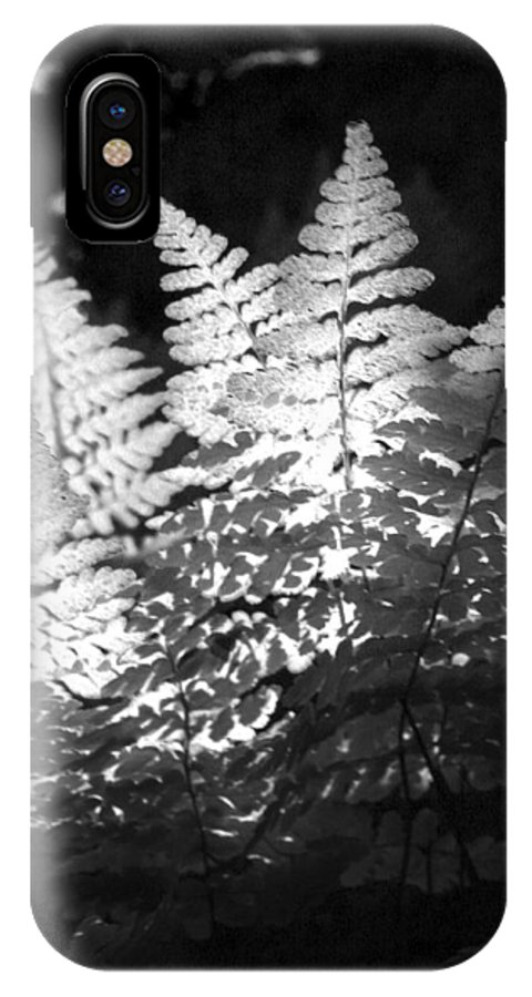 Fern IPhone X / XS Case featuring the photograph After Glow by Randy Oberg