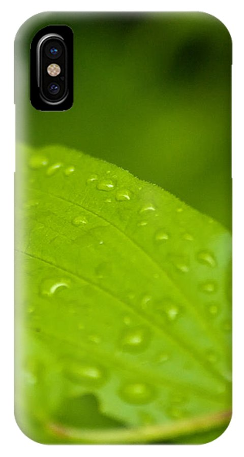 Closeup IPhone X Case featuring the photograph After The Rainfall 2 by R J Ruppenthal
