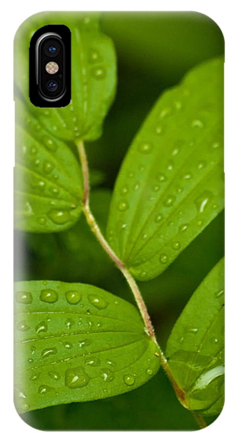 Closeup IPhone X Case featuring the photograph After The Rainfall by R J Ruppenthal