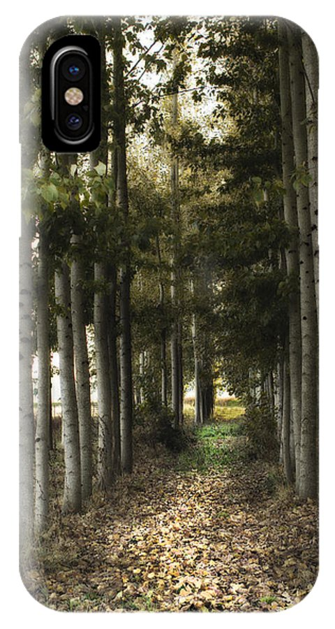 Birch IPhone X Case featuring the photograph Afternoon Stroll by Rebecca Cozart