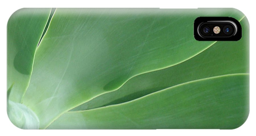 Agave IPhone X Case featuring the photograph Agave by James Temple