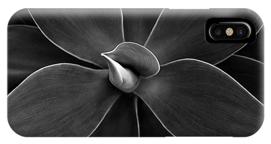 Agave IPhone X Case featuring the photograph Agave Leaves Detail by Marilyn Hunt