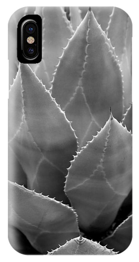Agave IPhone X Case featuring the photograph Agave Tucson Airport by Mary Bedy