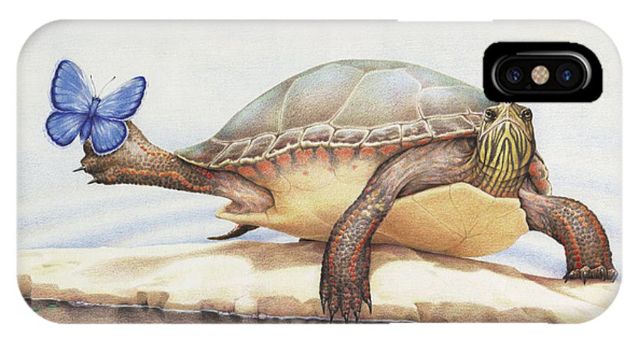 Turtle IPhone X Case featuring the drawing Alight On Her Toes by Amy S Turner