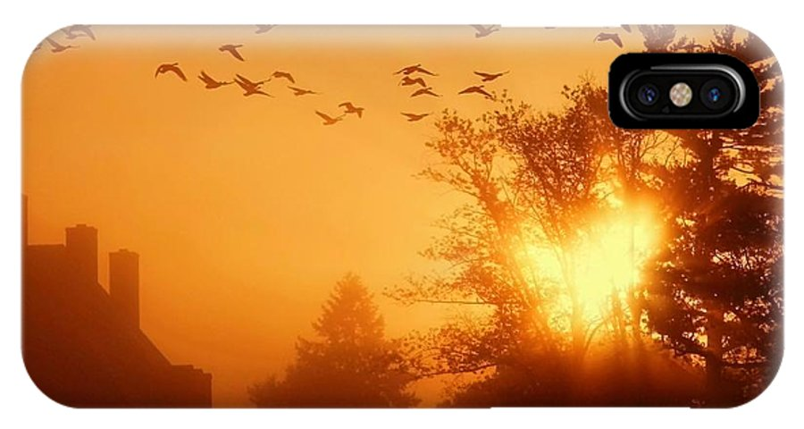 Sunrise IPhone X Case featuring the photograph Alive by Mitch Cat
