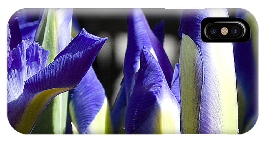 Almost Blooming - The Iris IPhone X Case featuring the photograph Almost Blooming - The Iris by David Patterson