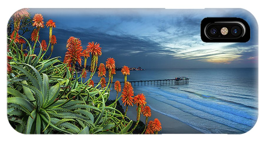 Green IPhone X Case featuring the photograph Aloe Vera Bloom by Creigh Photography