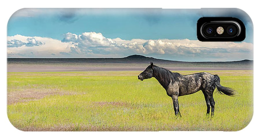 Mustangs IPhone X Case featuring the photograph Alone by Greig Huggins
