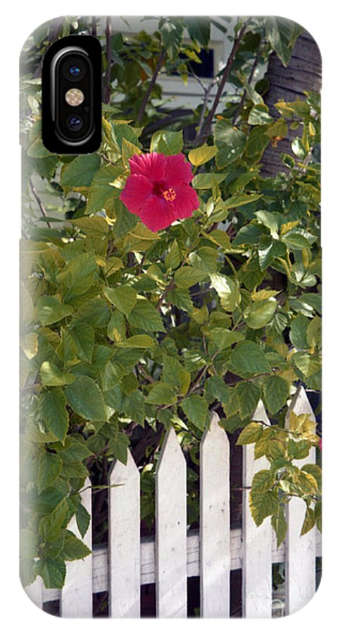 Azelea IPhone Case featuring the photograph Along The Picket Fence by Richard Rizzo