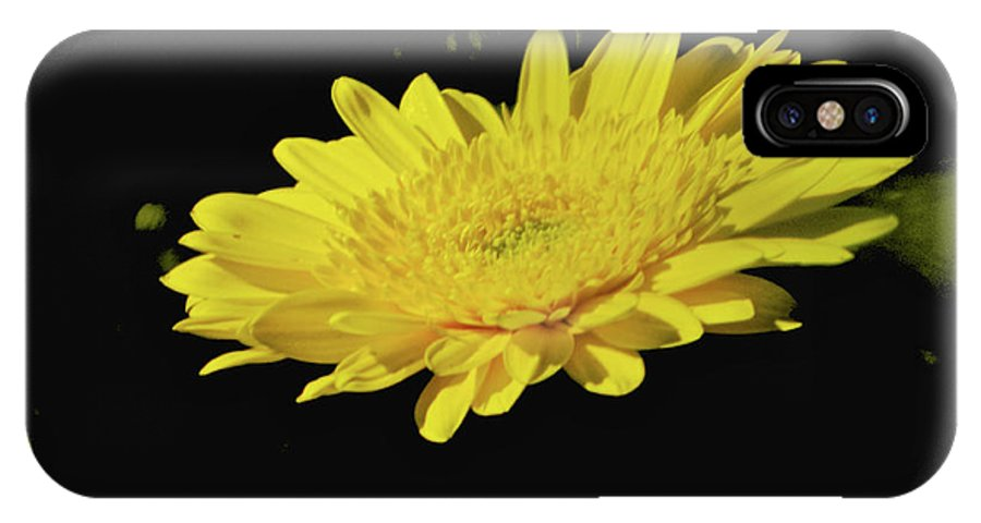 Yellow IPhone X Case featuring the photograph Amarillo 001 by Michael Genevro