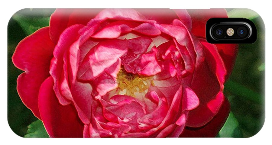 Rose IPhone Case featuring the photograph Amazing Rose by Eric Howell