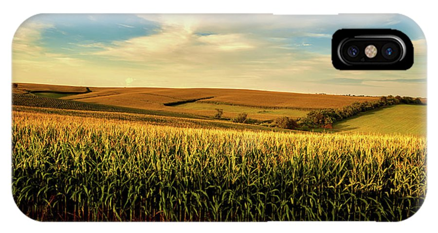 Jones County IPhone X Case featuring the photograph Amber Waves Of Grain by Mountain Dreams