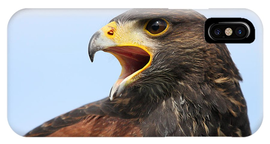 Eagle IPhone X Case featuring the photograph American Eagle by Pierre Leclerc Photography