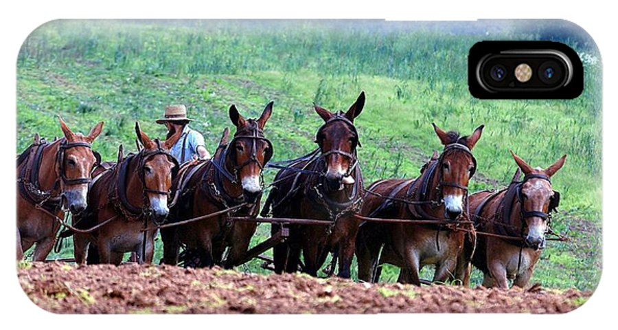 Amish IPhone X Case featuring the photograph Amish Plowing The Fields With Mules by Randy Matthews