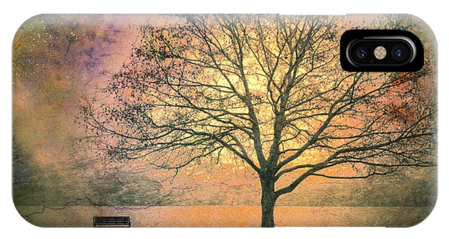 Tree IPhone X Case featuring the photograph And The Morning Is Perfect In All Her Measured Wrinkles by Tara Turner