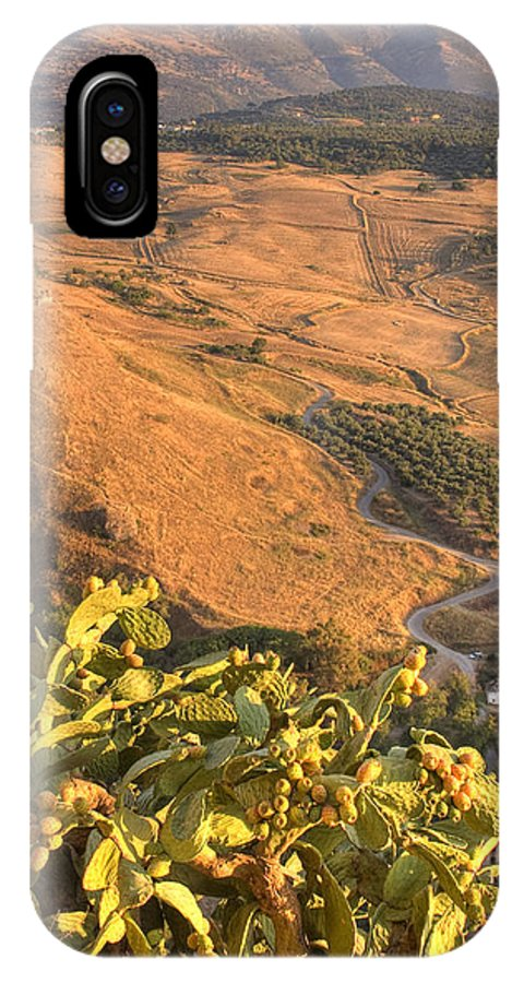 Cacti IPhone X Case featuring the photograph Andalucian Golden Valley by Ian Middleton