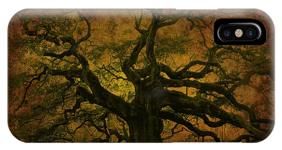 Angel Oak IPhone X Case featuring the photograph Angel Oak 3 Charleston by Susanne Van Hulst