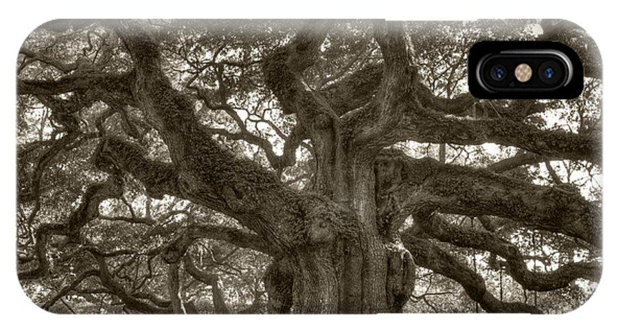 Angel Oak IPhone X Case featuring the photograph Angel Oak Live Oak Tree by Dustin K Ryan